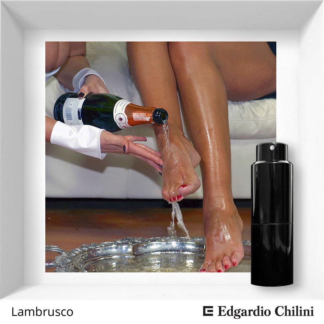 Яркий фруктовый аромат Lambrusco Edgardio Chilini