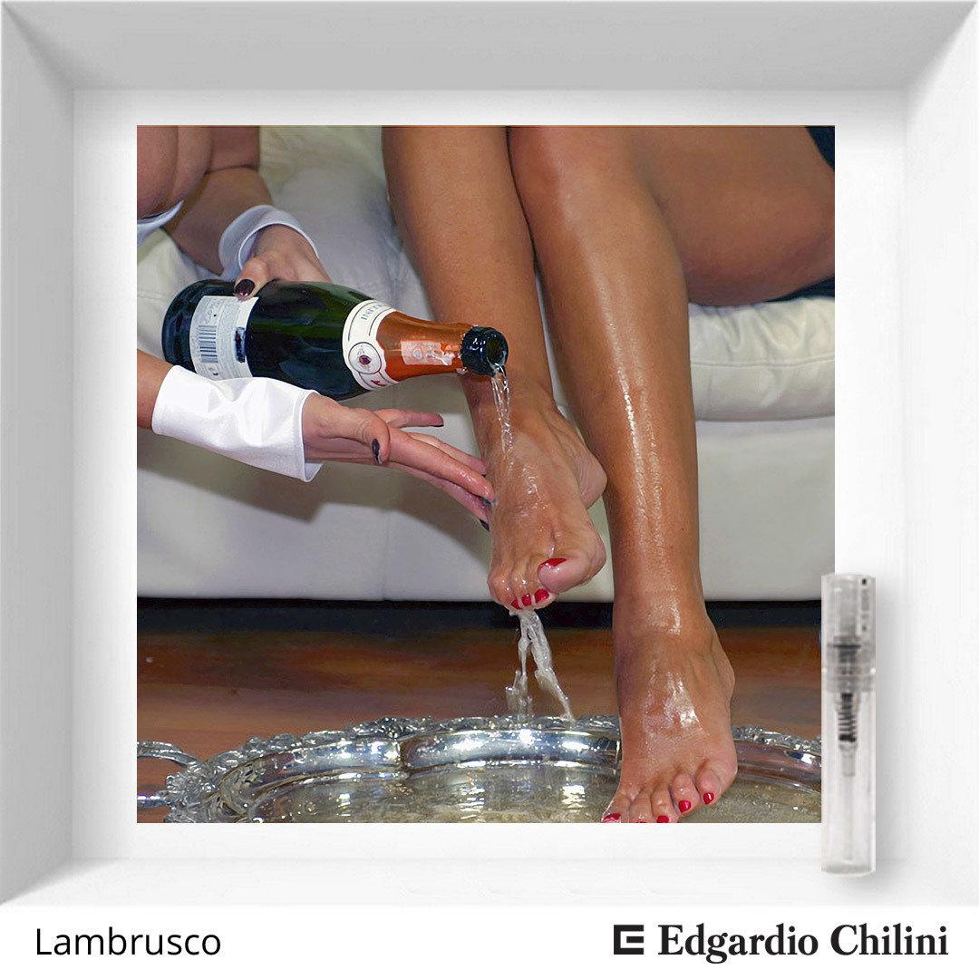 Яркий фруктовый аромат Lambrusco, Edgardio Chilini, 2 ml