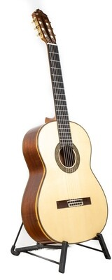 Estevé 12 - Professional Level Classical Guitar - Spruce top, Pau Ferro Back/Sides -  All Solid Woods - Handcrafted in Valencia, Spain