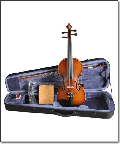 Aileen Acoustic Electric Violin - VE 102B - FOAMED CASE + BOW + ROSIN