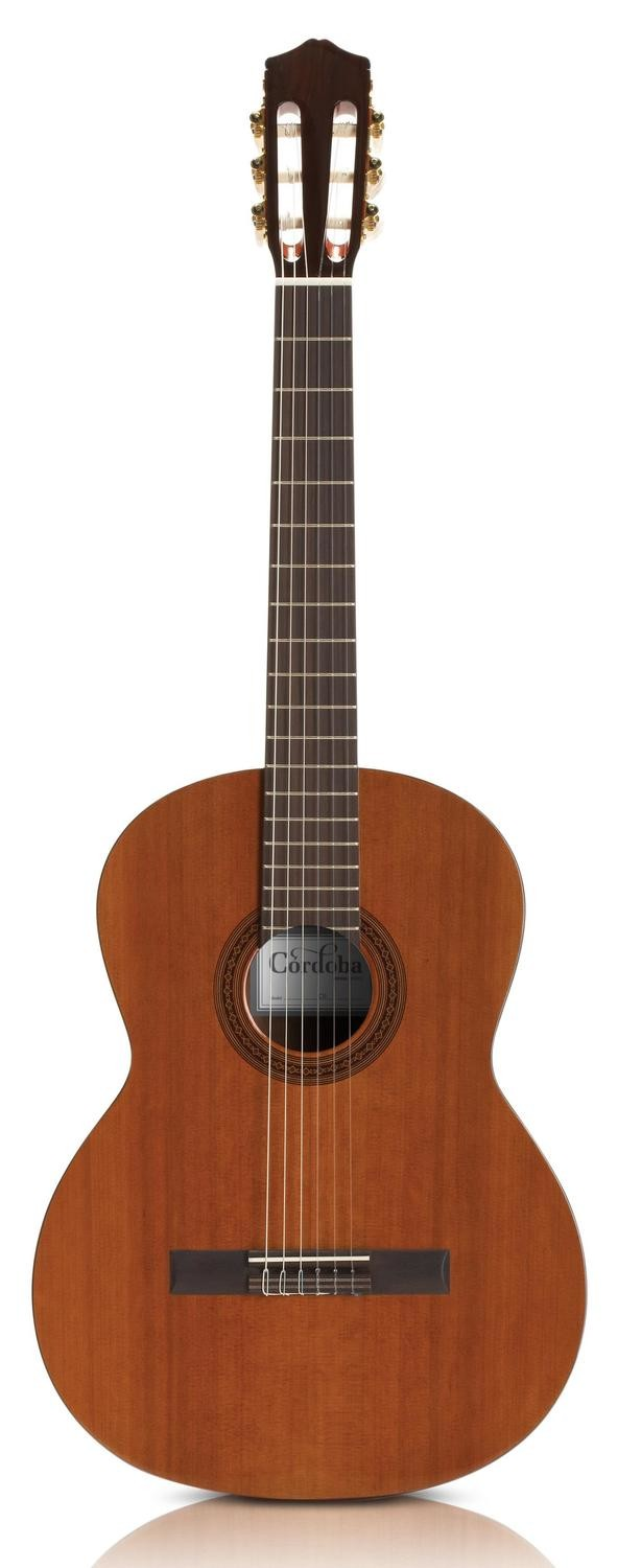 Cordoba C5 Nylon String Acoustic Guitar with Deluxe Gig Bag and Cordoba Clip on Digital Tuner