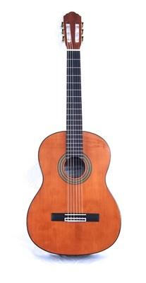 Calido CG 1210 Classical Guitar - Solid Cedar top, Ebony fretboard, Mahogany back/sides - Free Cordoba Polyfoam Case