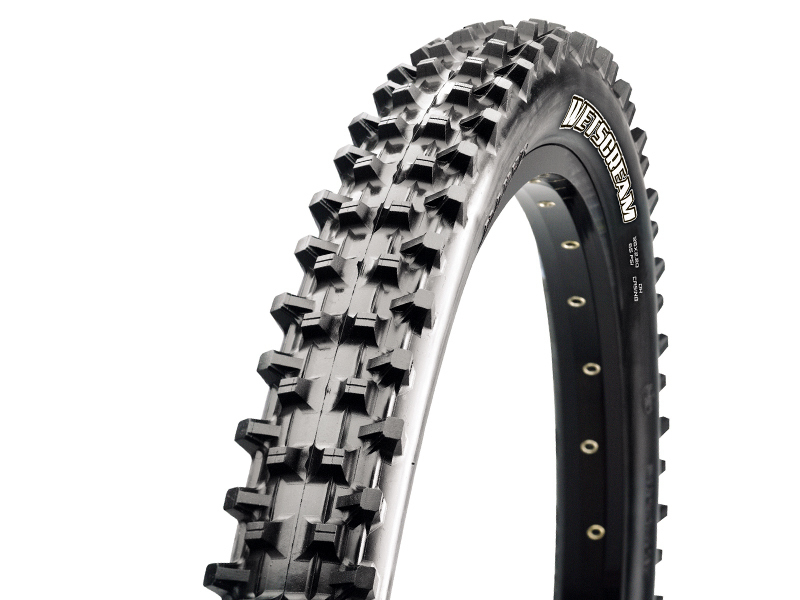 Maxxis Wetscream 26x2.50 / TB74276000 15424