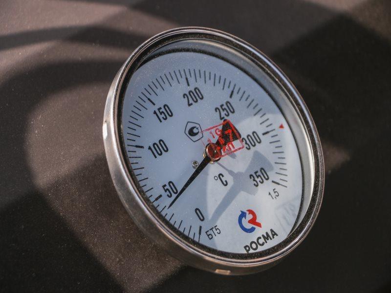 Термометр 12089