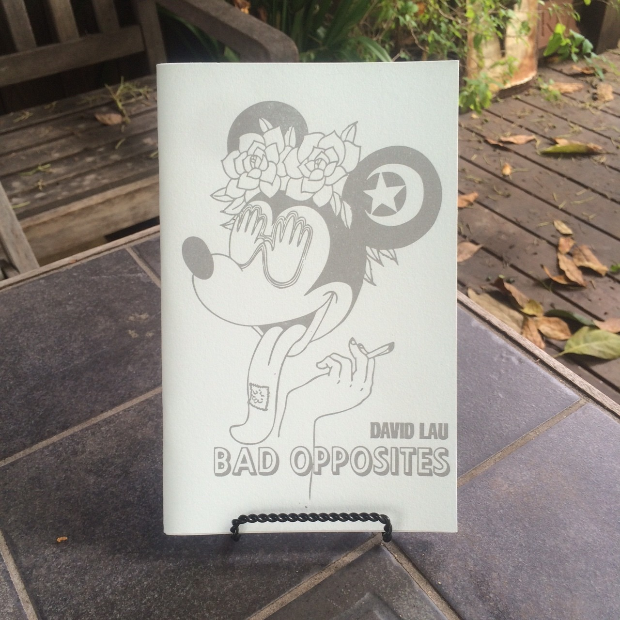 Bad Opposites, by David Lau