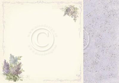 New Beginnings - Dreams of Lilacs