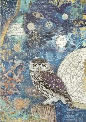 Cosmos - Owl Rice Paper