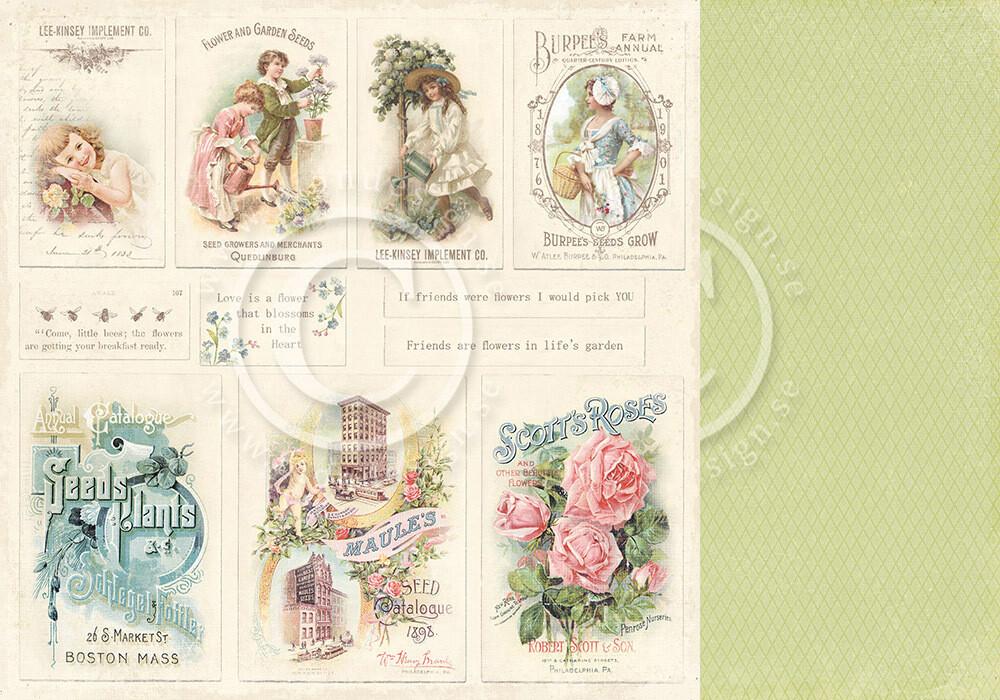 Vintage Garden - Images