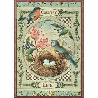 County Life Birds Rice Paper