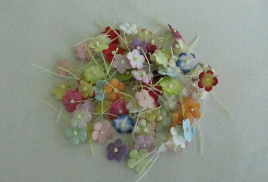 Tiny Flat Flowers Mixed 84