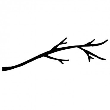 Savvy Dies - Branch