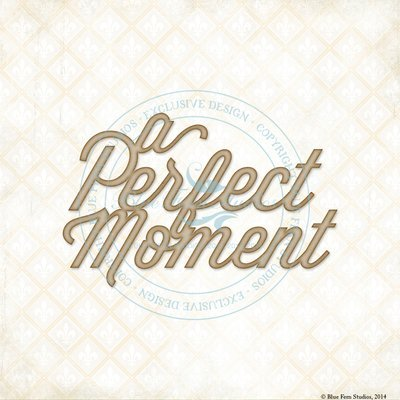 A Perfect Moment
