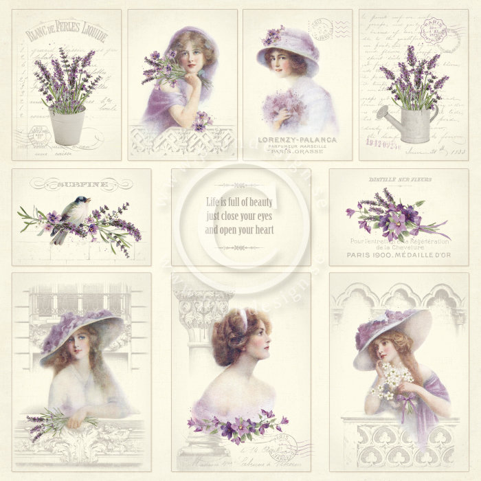Scent of Lavender - Images From the Past