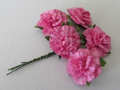 Carnations - Click to Select