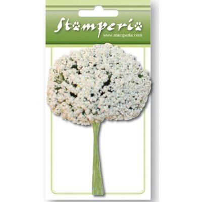 White Gipsophila
