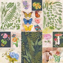 'Bella' Botanical paper