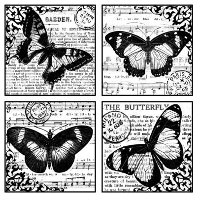 Four Beautiful Butterflies