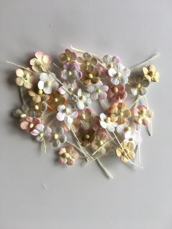 Tiny Flat Flowers Mixed 45