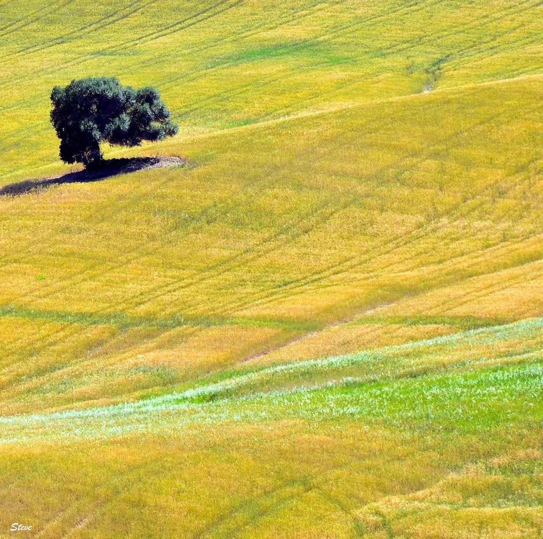 Trittico Andalusia 3
