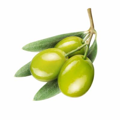Organic Chetoui UPEVOO