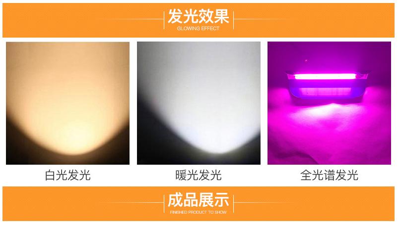 Фитоматрица для вольфрамового светильника 220V 50W