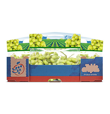 Caja de Uvas verdes sin semillas - 18 Libras