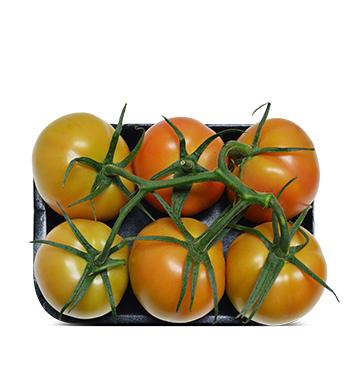 Tomate Manzano con Tallo - Bandeja con 6 Unidades