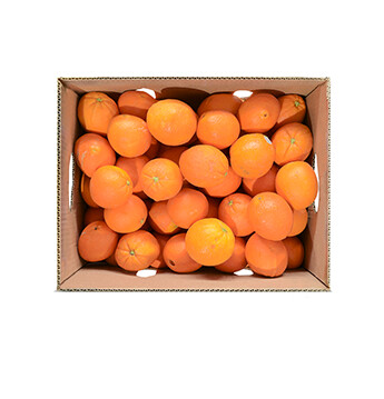 Caja de Naranjas Navel (Calibre 72) - 40 Libras