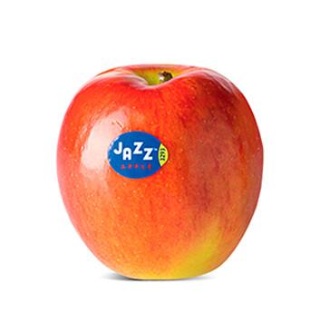 Manzana Jazz - Mediana (Cal. 150-163) - Unidad