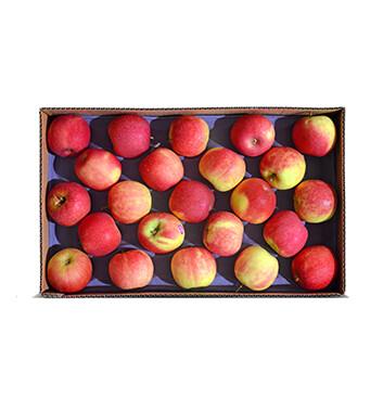 Caja de Manzanas Cripps Pink - Importada (Cal. 100-113) - 40 Libras