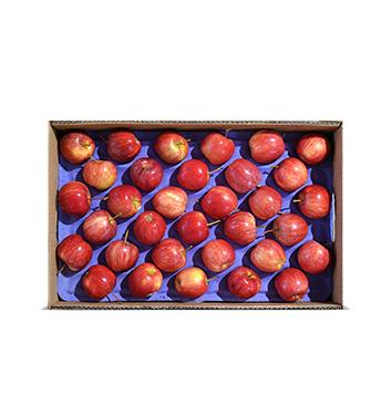 Caja de Manzanas Gala - Infantil (Cal. 175-198) - 40 Libras