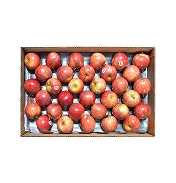 Caja de Manzanas Gala - Mediana (Cal. 150-163) - 40 Libras