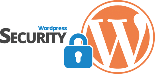 Secure Wordpress Websites 01105