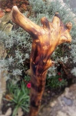 Holzwanderstock