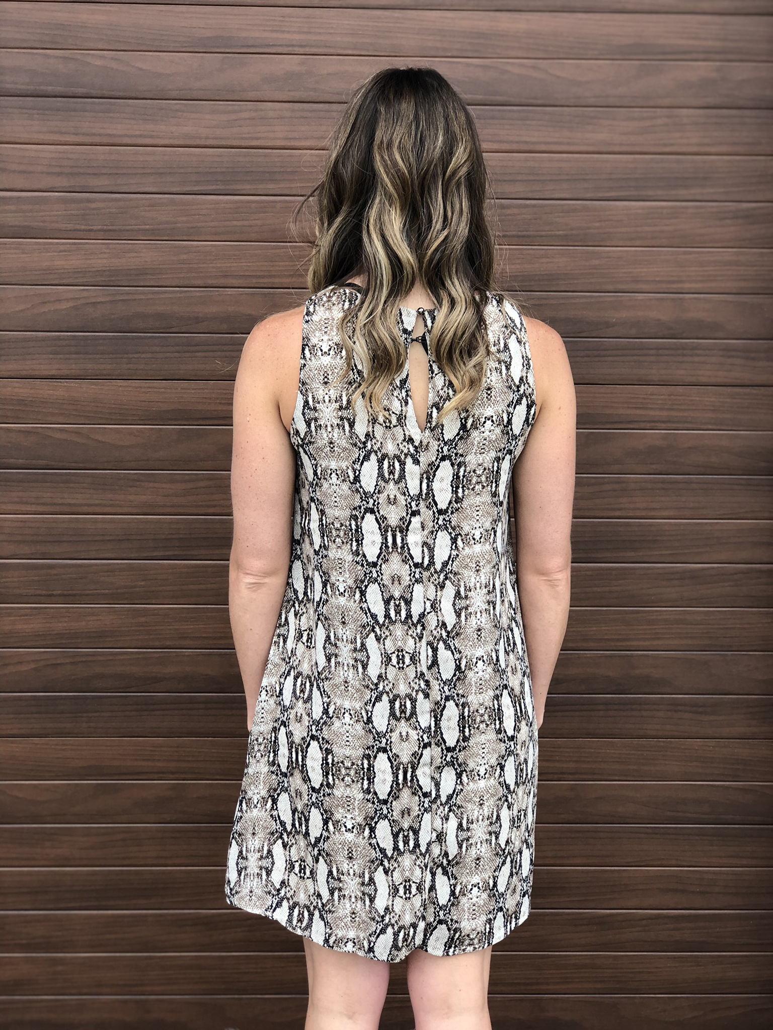 Brown Snake Dress
