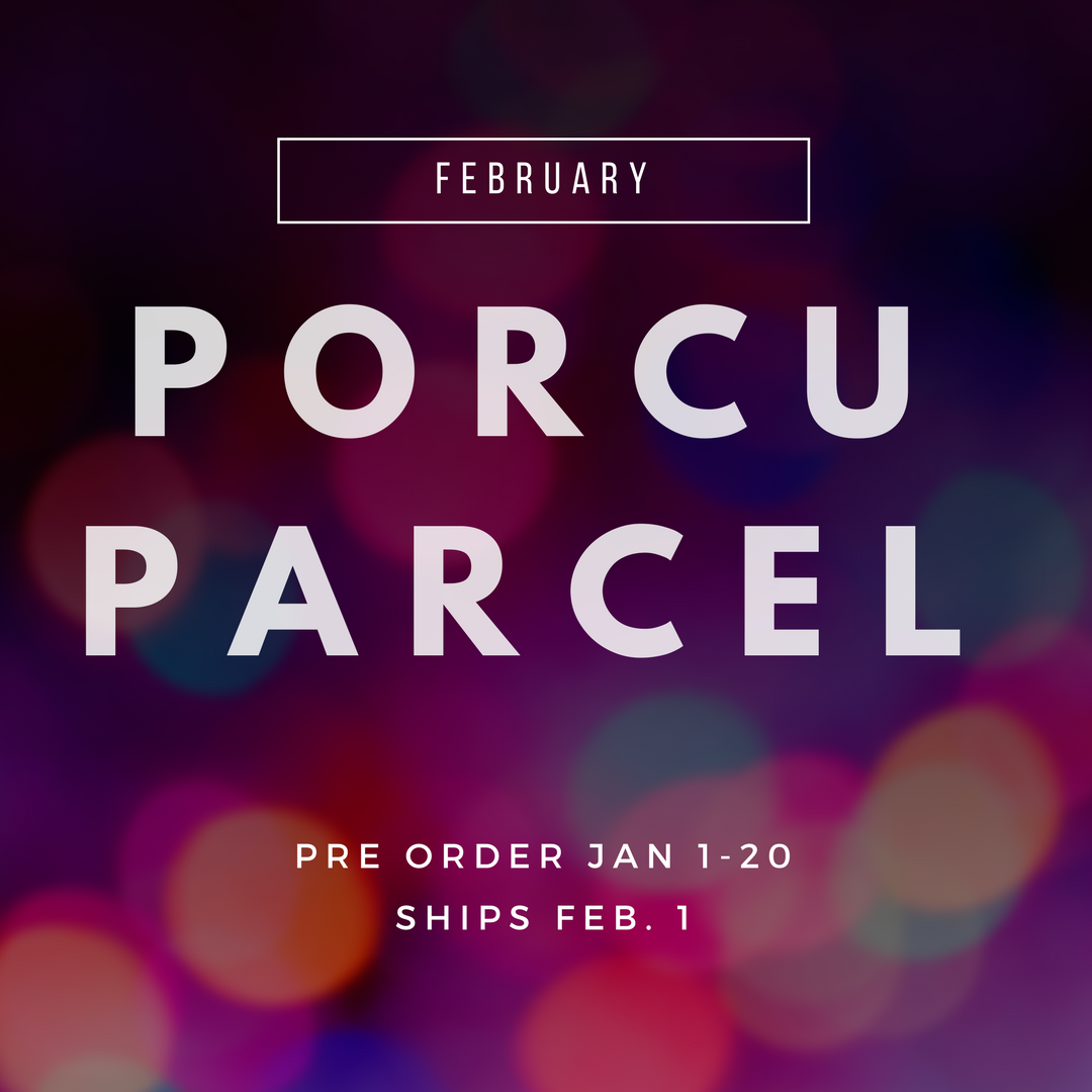 The Porcuparcel Style Box - February - PRE SALE NO LONGER AVAILABLE 99528
