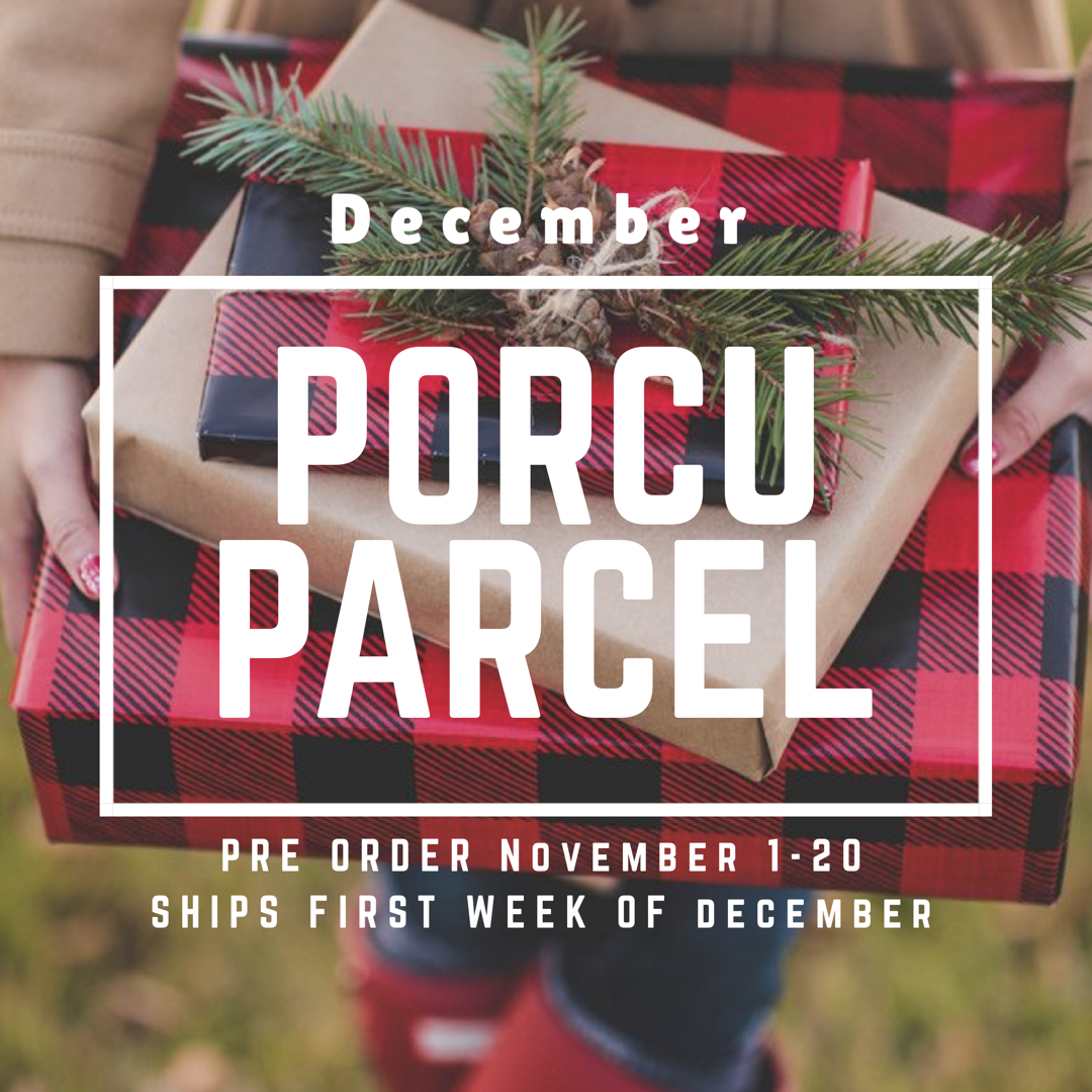 The Porcuparcel Style Box - December 999999753
