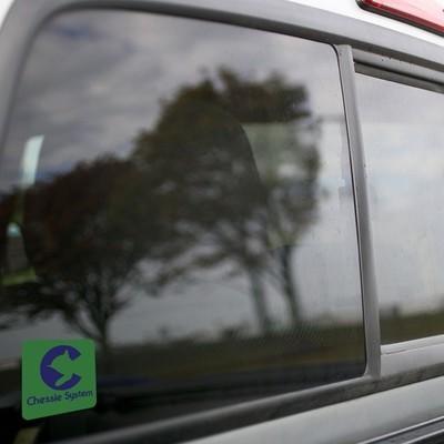 Vinyl Sticker - Chessie Safety Caboose Logo (Green/Blue)