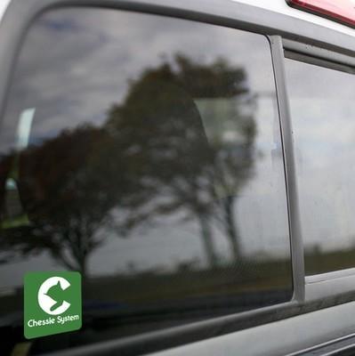 Vinyl Sticker - Chessie Safety Caboose Logo (Green/White)