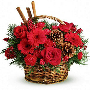 CESTINO RED PINES / RED PINES BASKET