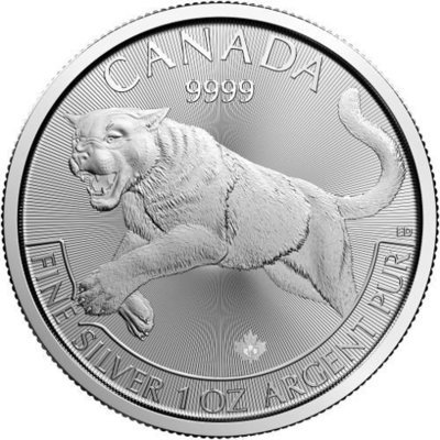 1 OZ // Canadian Cougar 2016