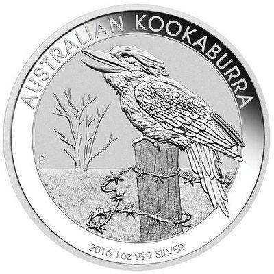1 OZ // Australian Kookaburra