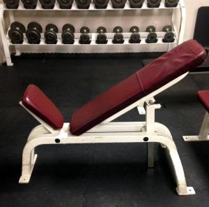 REDUCED! Adjustable Cybex Incline Bench (used)
