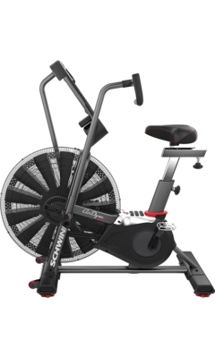 Schwinn Air Dyne Pro Commercial-Grade Air Bike