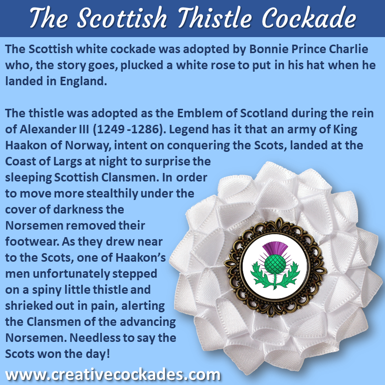 Scottish White Thistle Cockade