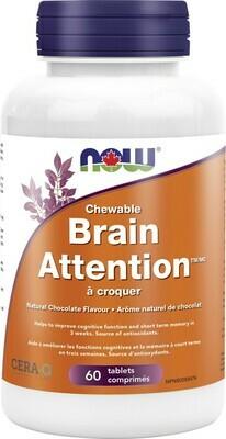 Brain Attention