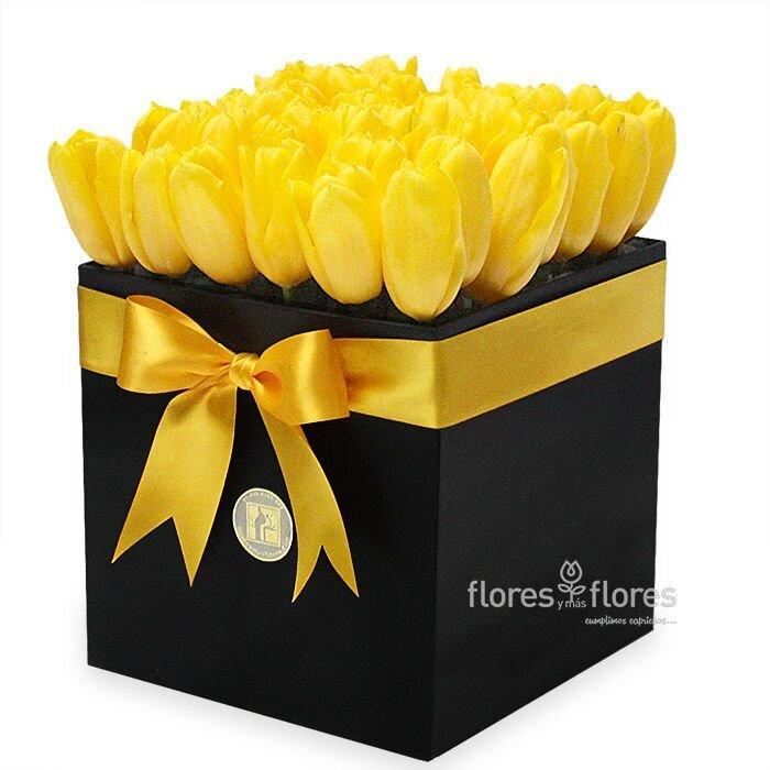 Camile Tulipanes Amarillos En Caja