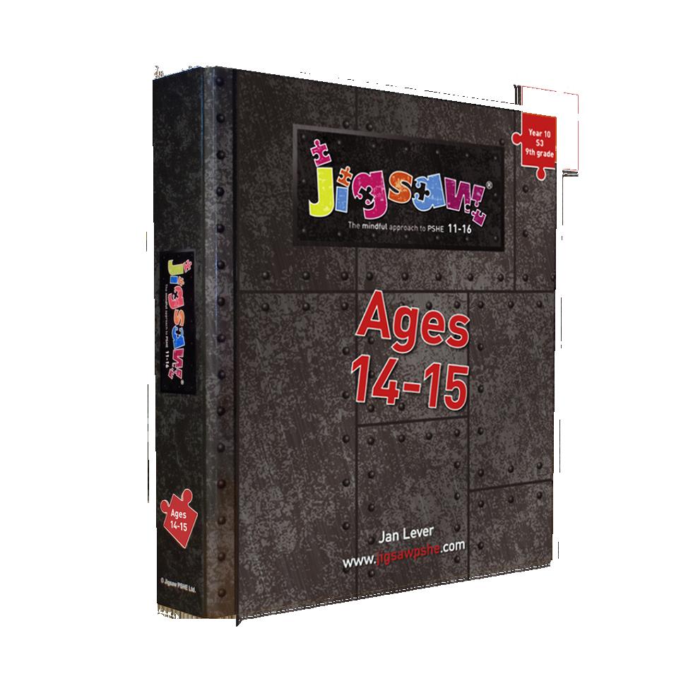 Jigsaw 11-16 Single Set: Ages 14-15