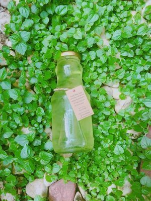 Aloe Juice Low Sugar 2% Fresh (6 pack)