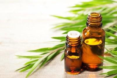 Tea Tree Essential Oil (Australia, 15ml)